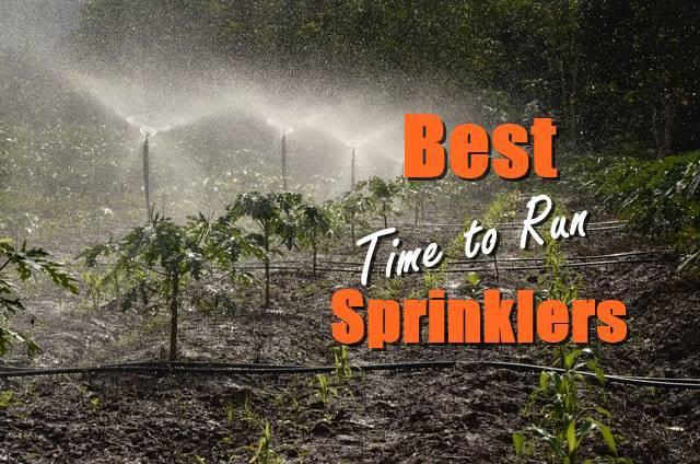 Time to Run Sprinklers