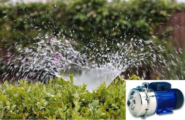 best sprinkler pumps reviews