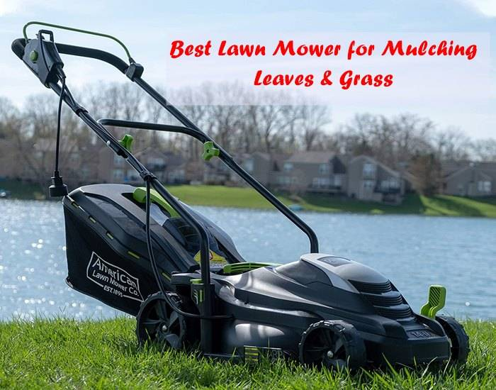 mower for mulching leaves and grass