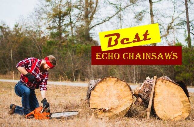 Best Echo Chainsaws reviews