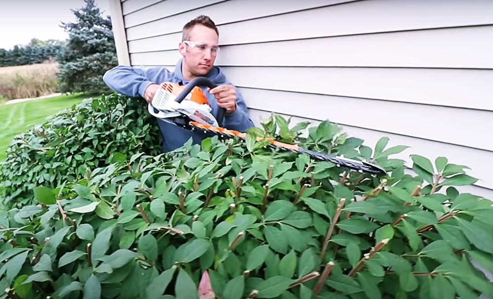best gas hedge trimmer reviews