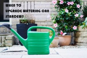 WATERING CAN STARDEW