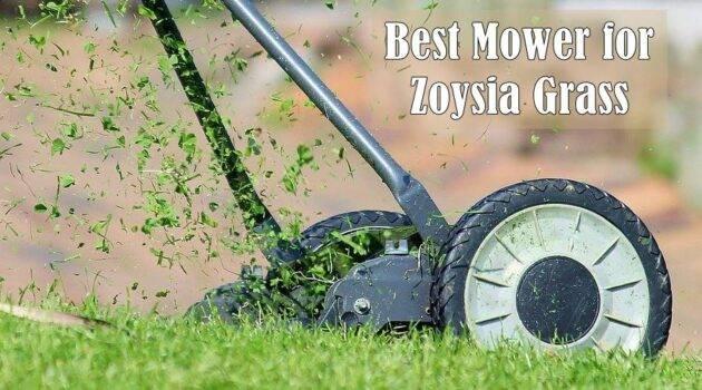 lawn mower for zoysia grass