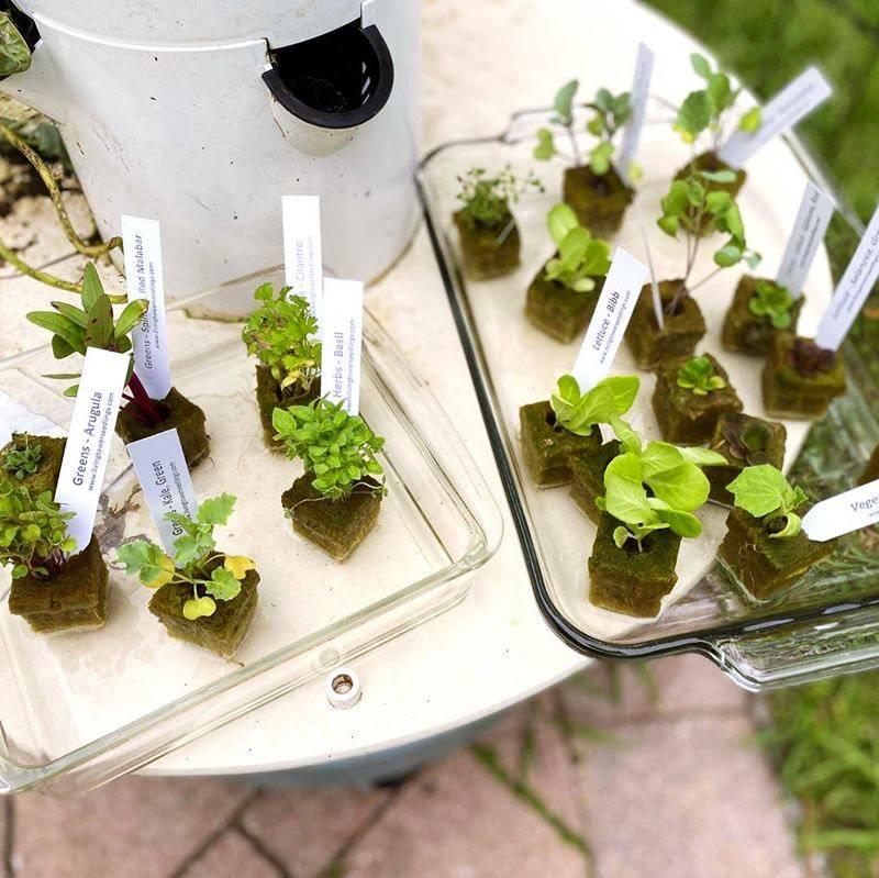 tower garden making