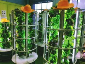 how to make a tower garden