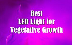 Best LED Light for Vegetative Growth Reviews