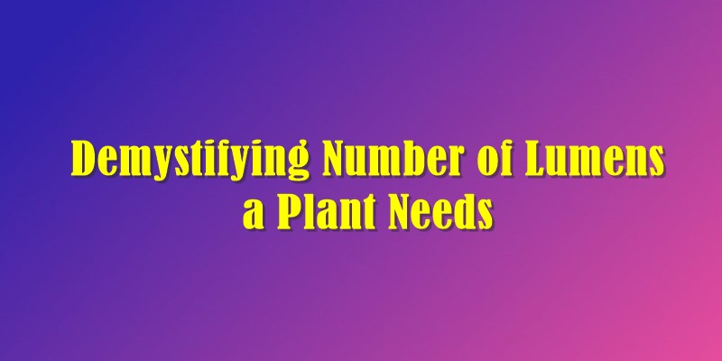Number of Lumens a Plant Needs